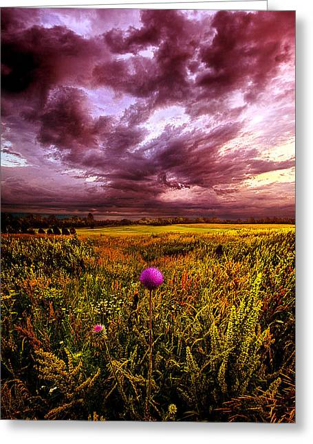 Blue Thistles Greeting Cards - Time and Again Greeting Card by Phil Koch