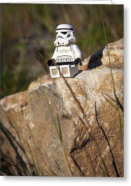 Recently Sold -  - Lego Greeting Cards - Time for Reflection Greeting Card by Samuel Whitton