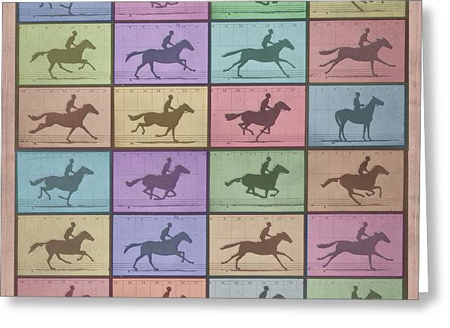 Nature Study Mixed Media Greeting Cards - Time Lapse Motion Study Horse Color Greeting Card by Tony Rubino