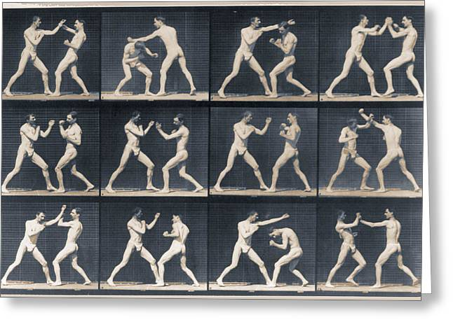 Nature Study Mixed Media Greeting Cards - Time Lapse Motion Study Men Boxing Greeting Card by Tony Rubino