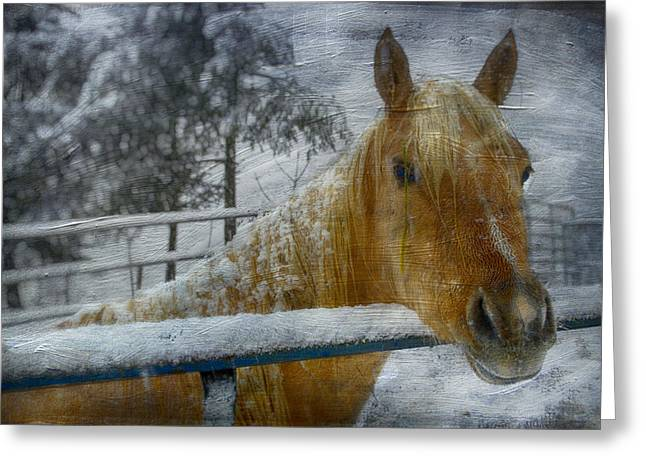 Time Stands Still Greeting Card by Kathy Jennings