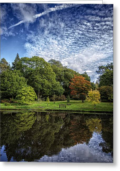 Reflecting Water Greeting Cards - Time to Reflect Greeting Card by Helen Hotson