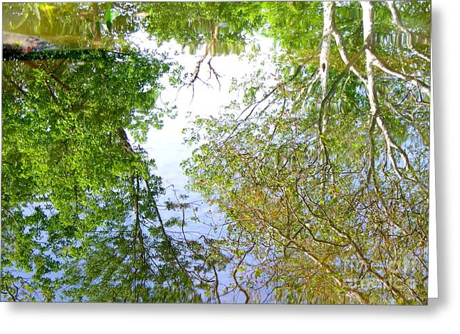 Trees Reflecting In Water Greeting Cards - Time to Reflect Greeting Card by Kitrina Arbuckle