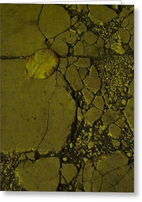 Guy Ricketts Photography And Art Greeting Cards - Time Worn and Trodden Down Greeting Card by Guy Ricketts