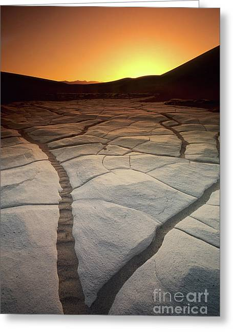Timeless Death Valley Greeting Card by Bob Christopher
