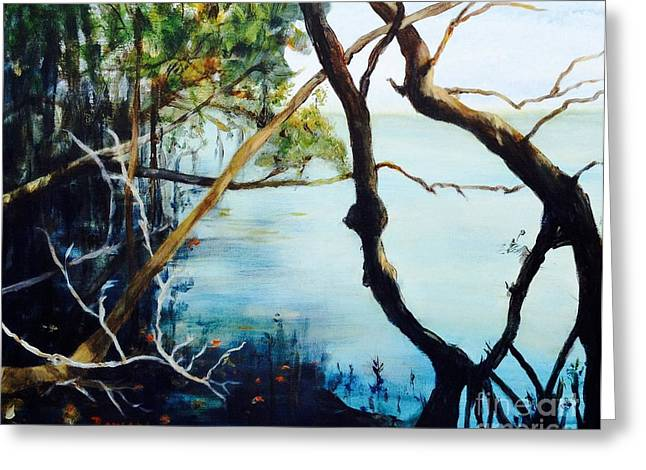 Mangrove Forest Greeting Cards - Timeless Forest Greeting Card by Mary Lynne Powers