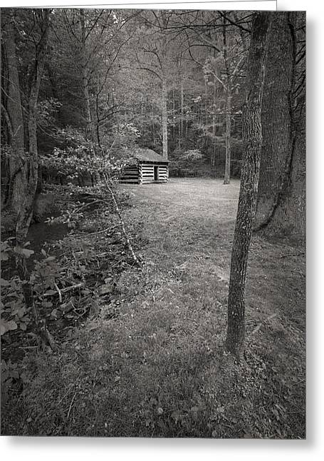 Smokey Mountains Greeting Cards - Timeless in the Cove Greeting Card by Jon Glaser