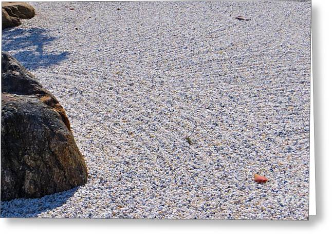 Self Discovery Photographs Greeting Cards - Timeless Zen Greeting Card by Joy Hardee