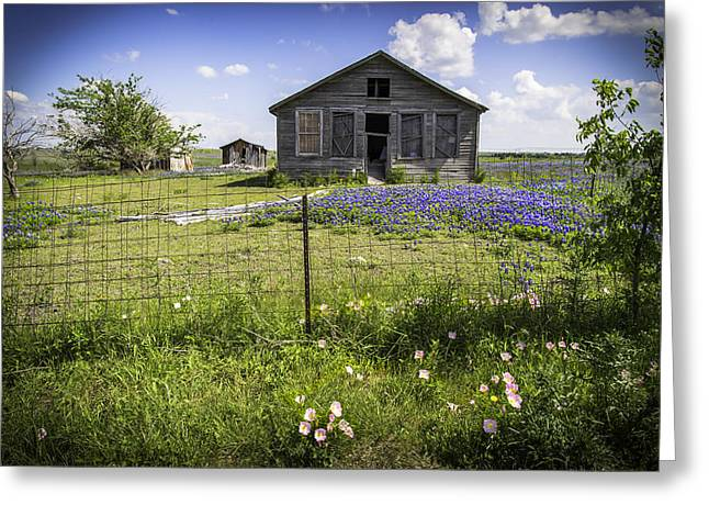 Outbuildings Greeting Cards - Times Past Greeting Card by Lynn Bauer