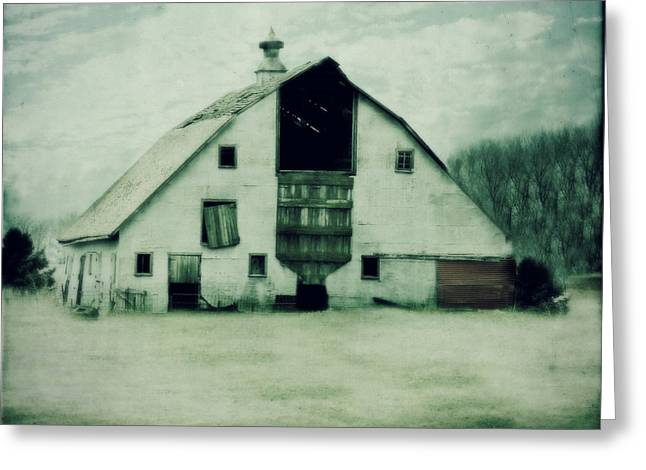 Barn Yard Greeting Cards - Tin barn Greeting Card by Julie Hamilton