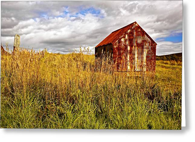 Old Barns Greeting Cards - Tin Roof Rusted Greeting Card by Marcia Colelli