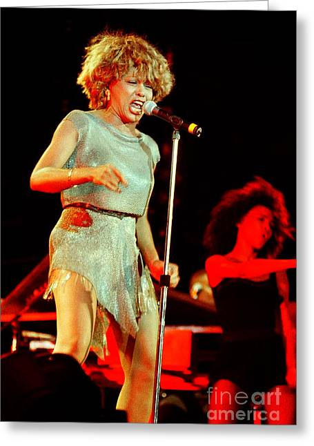 Tina Turner Greeting Cards - Tina Turner - 0446 Greeting Card by Gary Gingrich Galleries