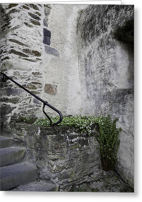 Stair-rail Greeting Cards - Tiny Corner Garden at Marksburg Castle Greeting Card by Teresa Mucha