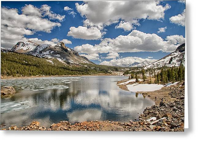 Scenic Greeting Cards - Tioga Lake Greeting Card by Cat Connor