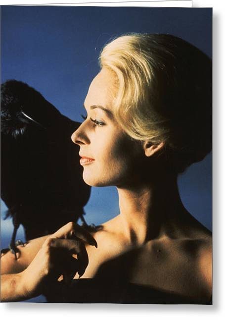 Publicity Shot Photographs Greeting Cards - Tippi Hedren in The Birds Greeting Card by Nomad Art And  Design