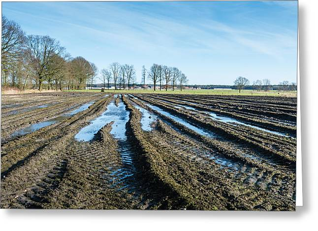 Mud Season Greeting Cards - Tire tracks and puddles in Belgian farmland. Greeting Card by Ruud Morijn