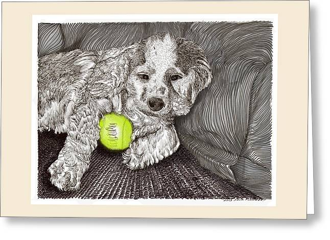 Dog With Tennis Ball Greeting Cards -  Tired Puppy Greeting Card by Jack Pumphrey