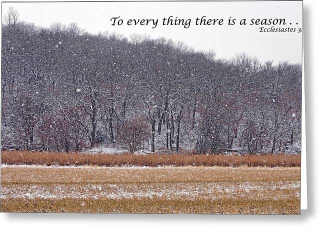 King James Version Greeting Cards - To every thing there is a season Greeting Card by Nikolyn McDonald