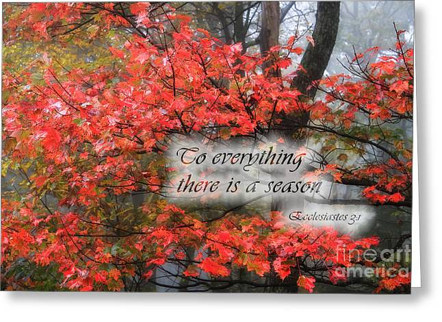 To Everything There Is A Season Greeting Card by Jill Lang
