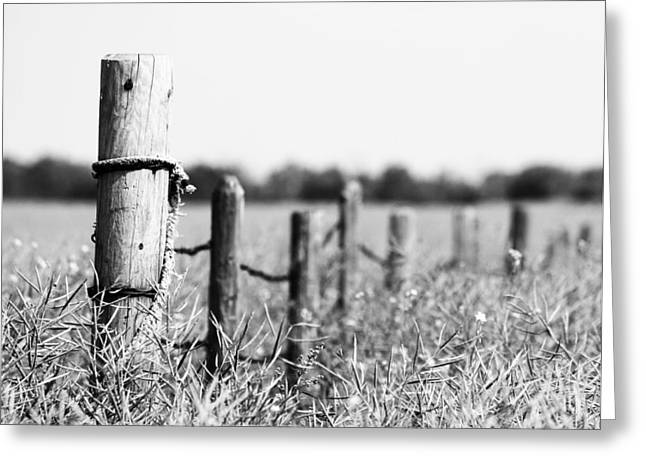 Fence Pole Greeting Cards - To Find My Bird b Greeting Card by Jerry Cordeiro