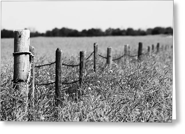 Fence Pole Greeting Cards - To Find My Bird Greeting Card by Jerry Cordeiro