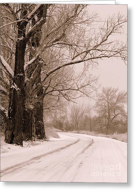 Winter Roads Greeting Cards - To Grandmas House Greeting Card by Carol Groenen