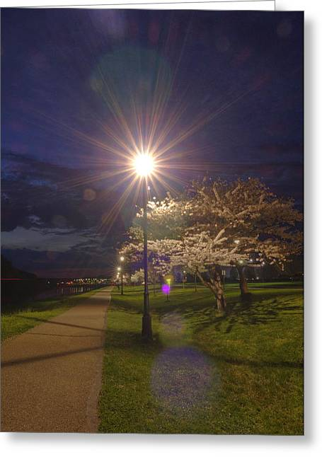 To Light The Way Greeting Card by Shirley Tinkham