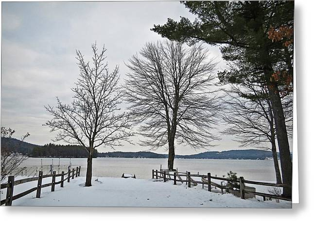 Split Rail Fence Greeting Cards - To Spofford Lake Greeting Card by MTBobbins Photography