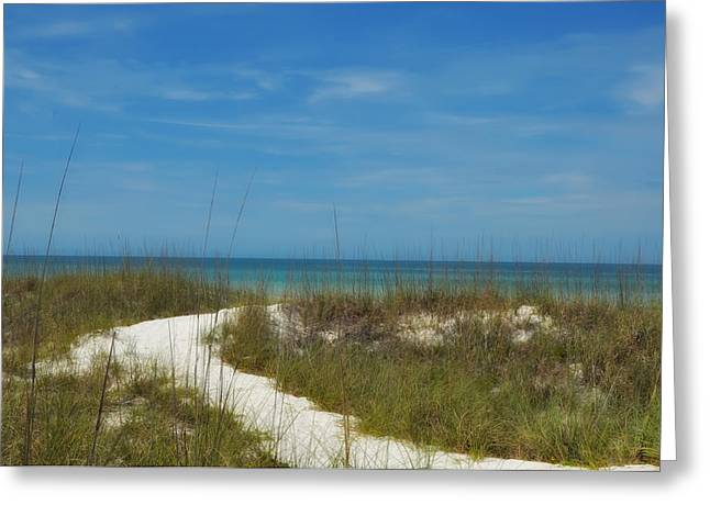 St Petersburg Florida Greeting Cards - To the Beach Greeting Card by Bill Cannon