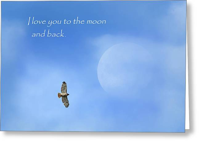 Redtail Hawk Greeting Cards - To The Moon And Back Greeting Card by Bill  Wakeley
