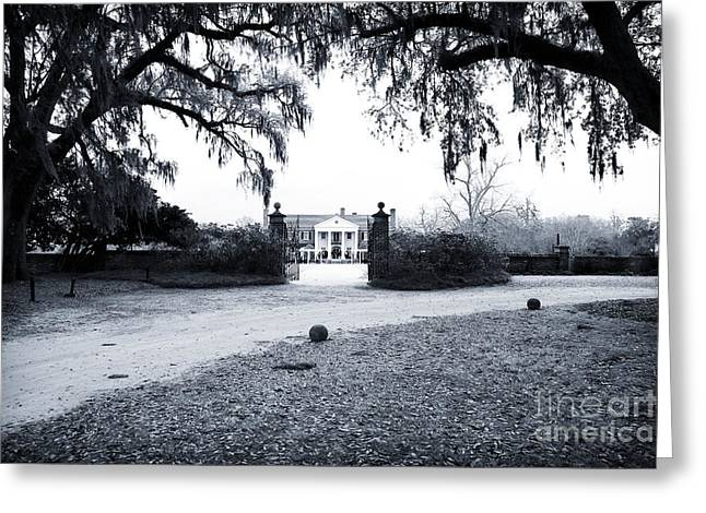Old School House Greeting Cards - To the Plantation Greeting Card by John Rizzuto