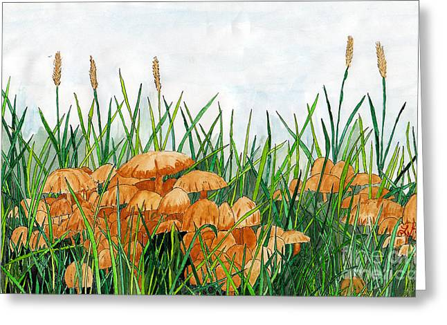 Toadstools Mixed Media Greeting Cards - Toadstools Greeting Card by Larry Hartfield