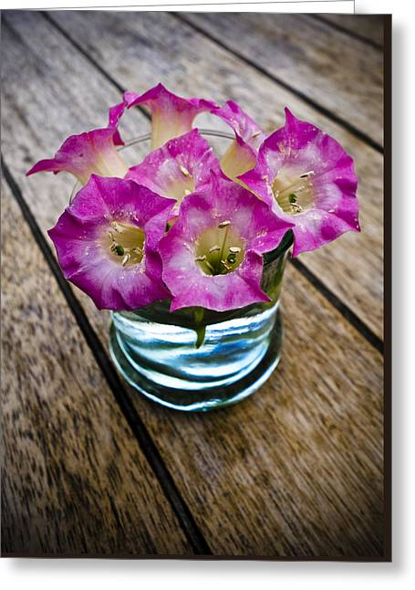 Flower Pictures Greeting Cards - Tobacco Flowers Greeting Card by Frank Tschakert