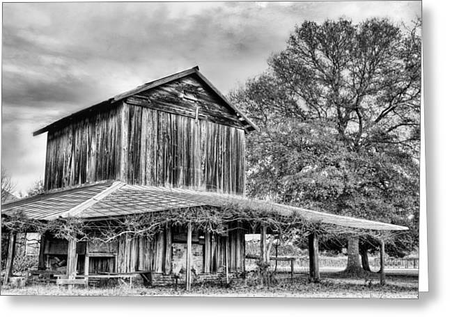 Tobacco Barns Greeting Cards - Tobacco Road BW Greeting Card by JC Findley