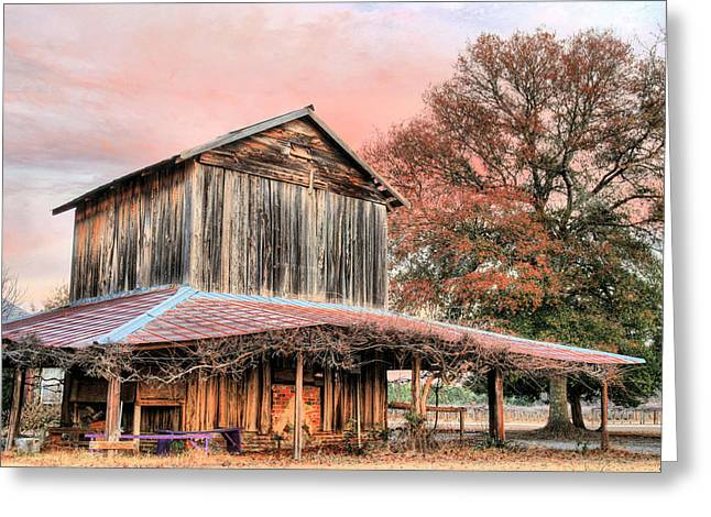 Tobacco Barns Greeting Cards - Tobacco Road Greeting Card by JC Findley