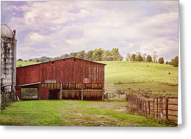 Farmers Field Greeting Cards - Tobacco Season Greeting Card by Heather Applegate