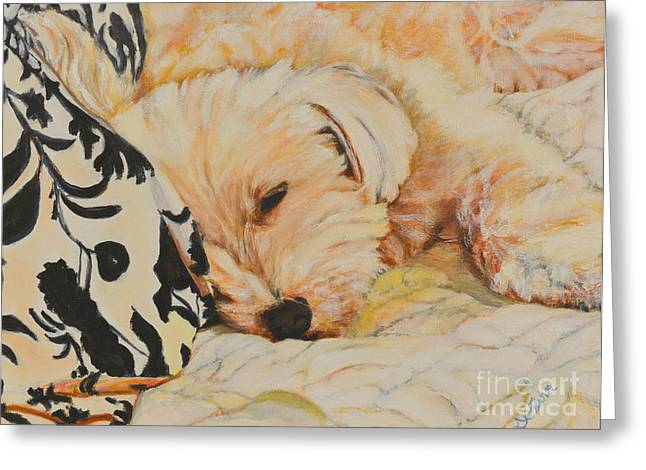 Sleepy Maltese Greeting Cards - Tobi Sleepy Head Greeting Card by Deborah Fisher