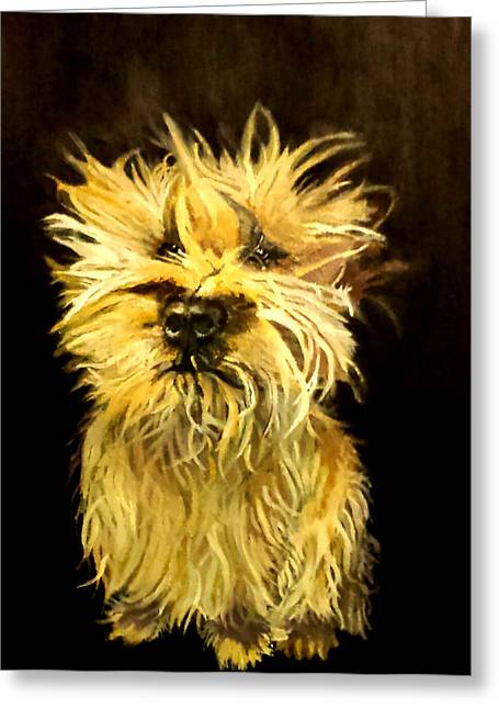 Recently Sold -  - Puppies Paintings Greeting Cards - Toby Greeting Card by Fallon Franzen
