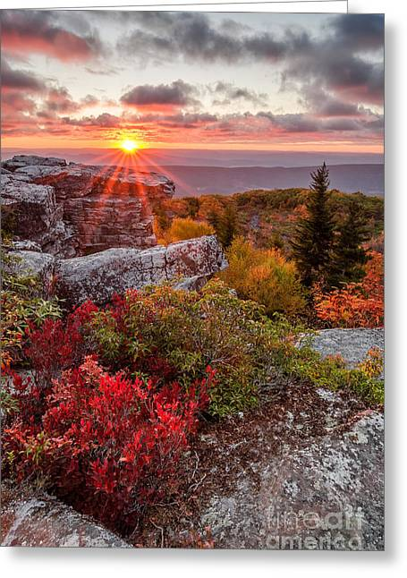Dolly Sods Wilderness Greeting Cards - Touch of Grace Greeting Card by Anthony Heflin