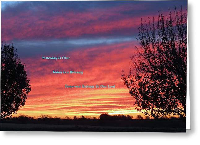 Wimberley Greeting Cards - Today Is Best Greeting Card by David  Norman