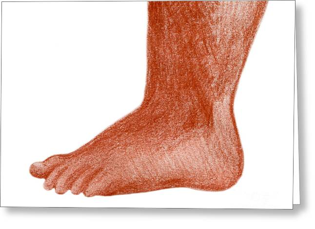 Grungy Drawings Greeting Cards - Toddler foot Greeting Card by Christina Rahm