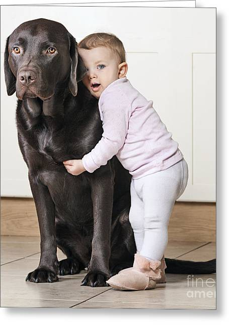 Pet Owner Greeting Cards - Toddler with Dog Greeting Card by Justin Paget