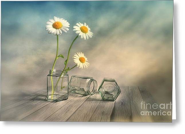 Daisy Digital Greeting Cards - Together 2 Greeting Card by Veikko Suikkanen