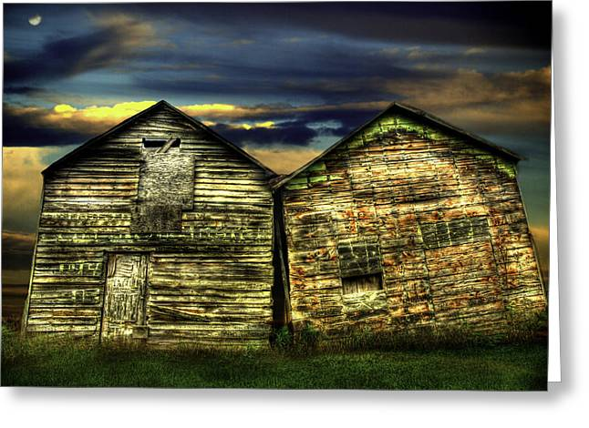 Barn Yard Greeting Cards - Together Until The End Greeting Card by Thomas Young