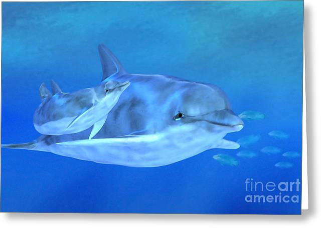 Dolphin Greeting Cards - Togetherness Greeting Card by John Edwards