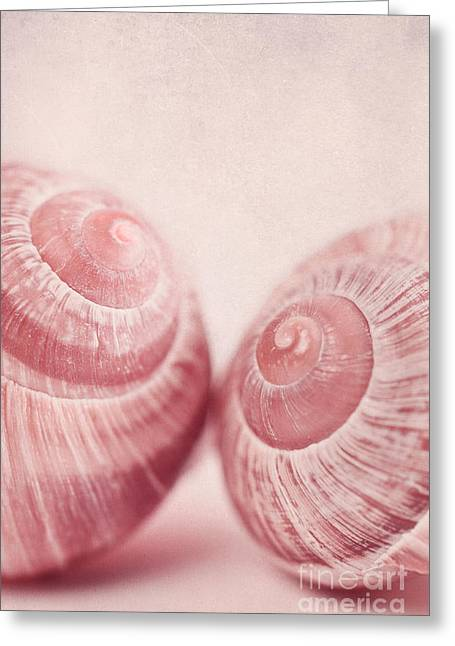Shell Texture Greeting Cards - Togetherness Greeting Card by Priska Wettstein