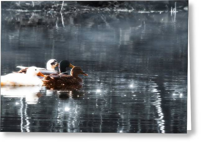 """soft Focus"" Greeting Cards - Together Greeting Card by Wim Lanclus"