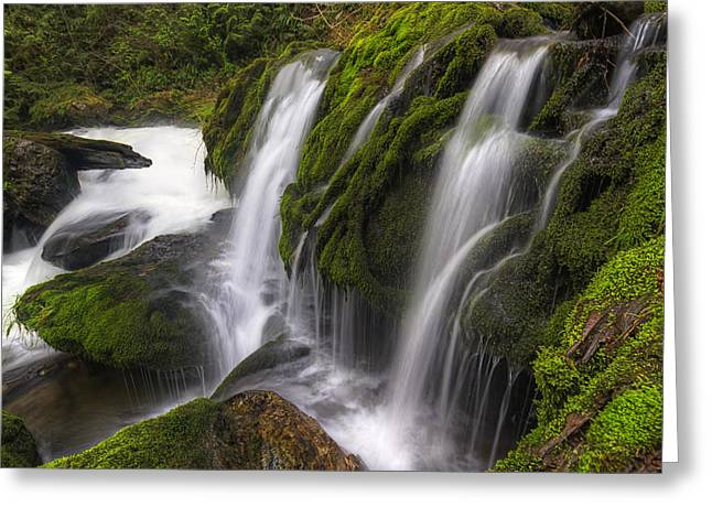 Moss Green Photographs Greeting Cards - Tokul Creek Cascades Greeting Card by Mark Kiver
