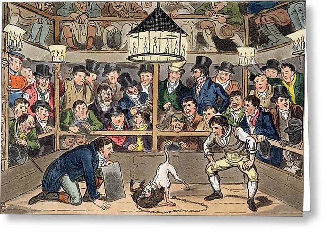 Bull Terrier Greeting Cards - Tom And Jerry Sporting Their Blunt Greeting Card by I. Robert & George Cruikshank