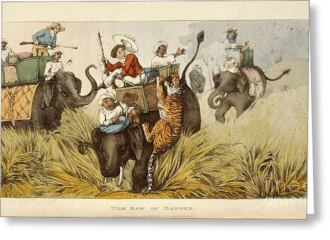 The Tiger Greeting Cards - Tom Raw In Danger Greeting Card by British Library